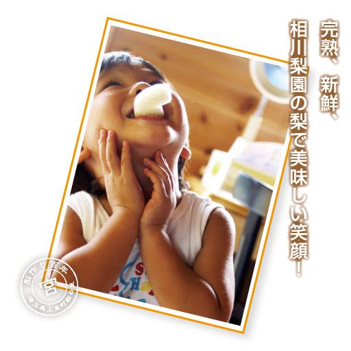 完熟、新鮮、相川梨園の梨で美味しい笑顔