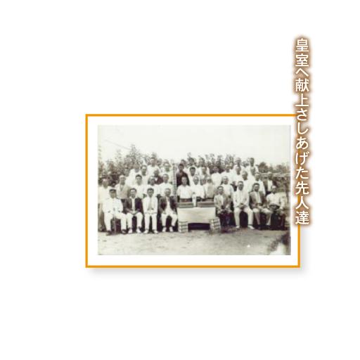 宮の梨-02歴史-image1