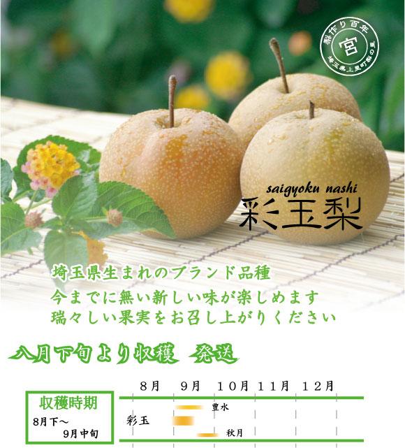彩玉:埼玉生まれのブランド品種