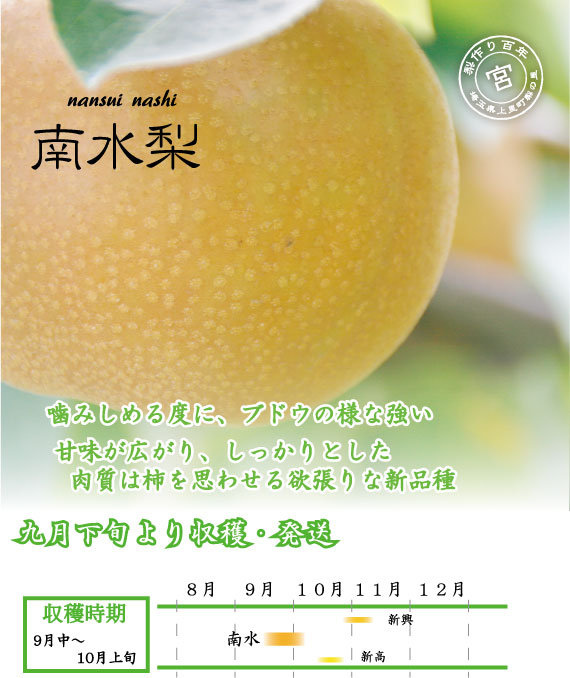 南水梨:強い甘みの新品種